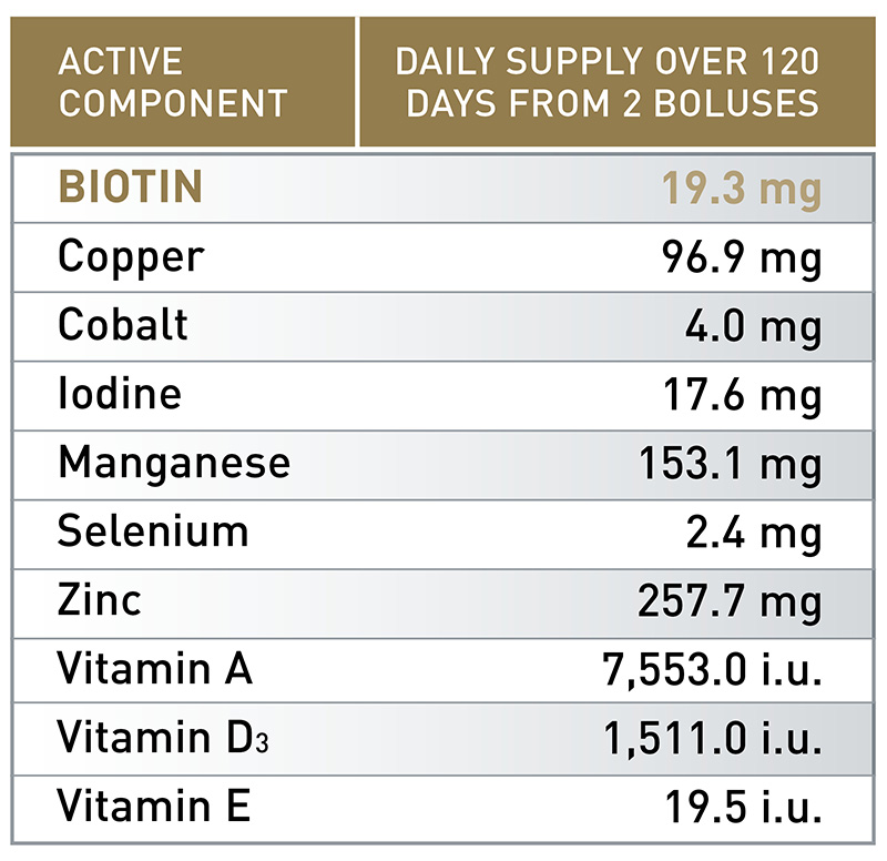 ALL-TRACE® BIOTIN GOLD | Agrimin